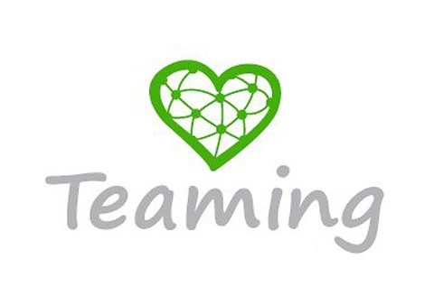 innovasocial_teaming